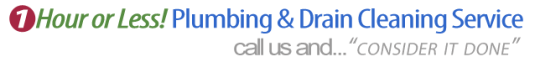AAP-All American Plumbing – Fast Response, Affordable Rates